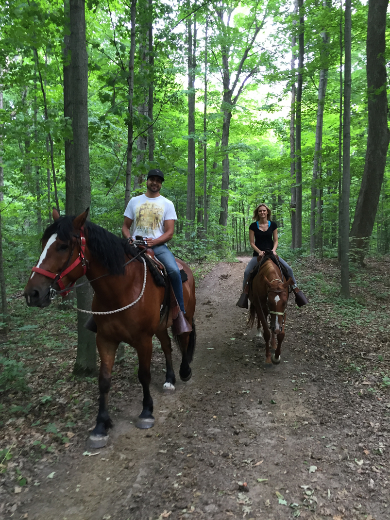 horseback riding guided trail rides