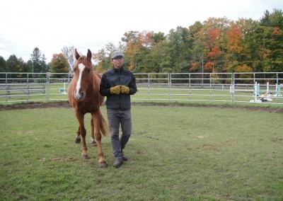 Horsemenship